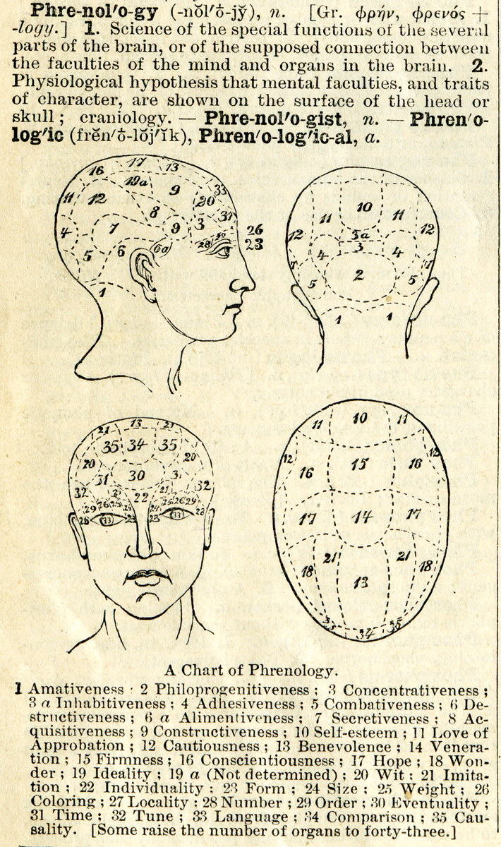 Chart of Phrenology